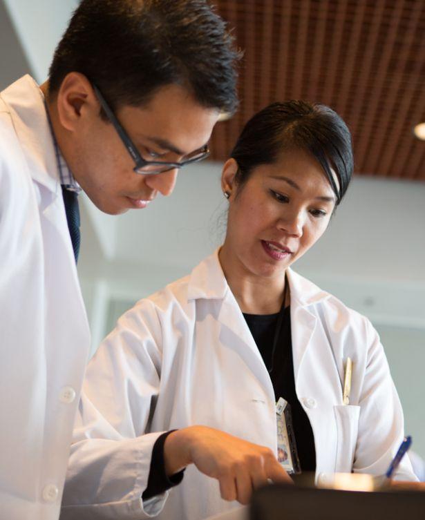 Chocoba supervising student pharmacist Balani