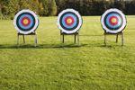archery targets on a lawn