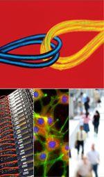 BTS Science Collage