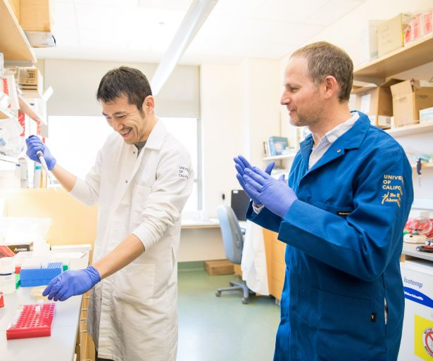 Ahituv, right, works in his lab with postdoc Fumitaka Inoue