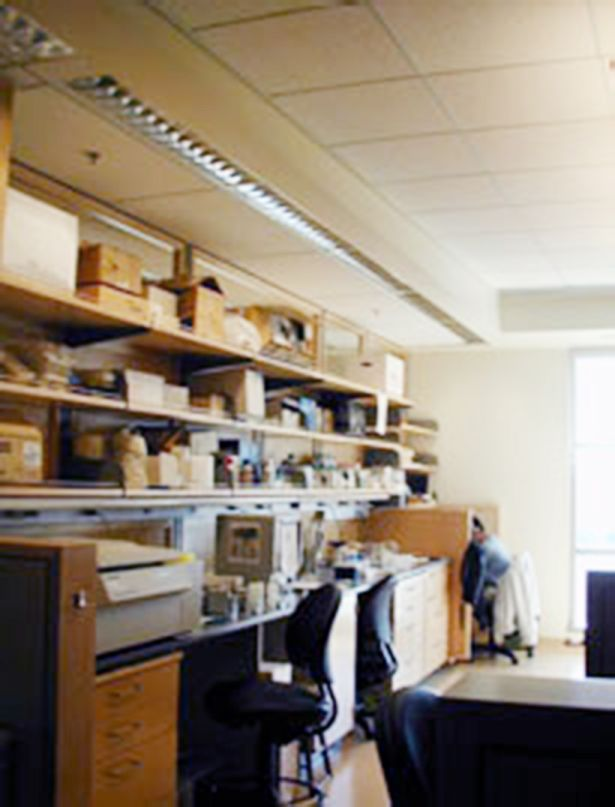 Mission Bay lab space