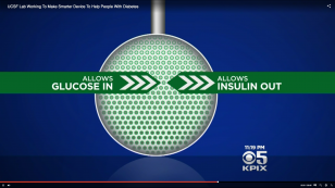diagram showing film allowing glucose in and insulin out