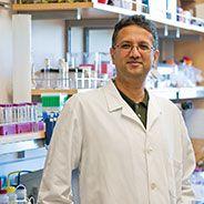 Shuvo Roy, PhD