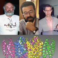 composite of Langridge, Kollman, Kuntz, and a wasabi receptor computer graphic