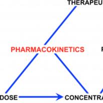 pharmacokinetics diagram
